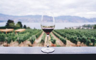 Best Colorado Wine and Wineries