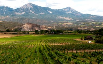 Exploring Colorado's West Elks American Viticultural Area