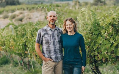 Storm Cellar Winery Q and A