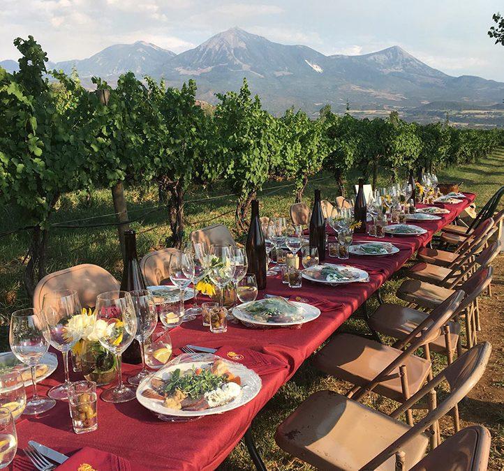 Food And Wine Pairings image