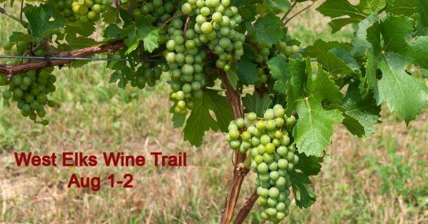 Wine Trail